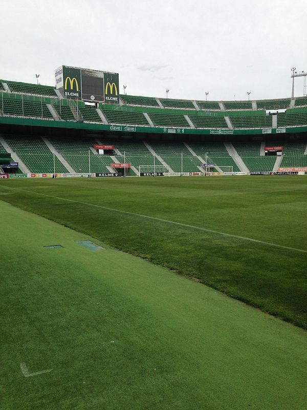 grounds elche 3